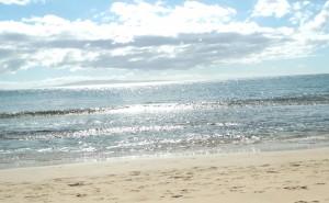 Mauis best snorkel beaches is Sugar Beach