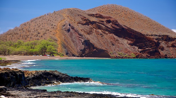 Top 10 Snorkel Beaches on Maui